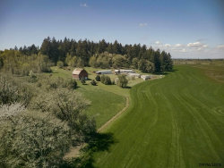 Photo of 37606 Rock Hill Dr, Lebanon, OR 97355-9380 (MLS # 731794)