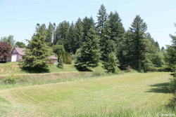Photo of 15435 Strong Rd, Dallas, OR 97338 (MLS # 749627)