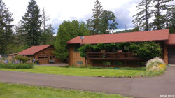 Photo of 24671 Daisy Dr, Philomath, OR 97370 (MLS # 751864)