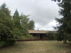 Photo of 27224 S Dave Rd, Canby, OR 97013 (MLS # 752201)