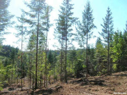 Photo of 1645 Pioneer (next to) #905 Rd, Dallas, OR 97338 (MLS # 699193)