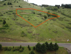 Photo of Hawk Hill (Lot #7), Philomath, OR 97370 (MLS # 704037)
