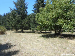 Photo of 7744 Fanny Ln SE, Aumsville, OR 97325 (MLS # 708295)