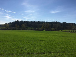 Photo of Helmick (Parcel #1) Rd, Monmouth, OR 97361 (MLS # 716357)