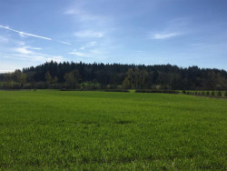 Photo of Helmick (Parcel #3) Rd, Monmouth, OR 97361 (MLS # 716362)