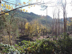 Photo of 00 Pleasant View Dr, Philomath, OR 97370 (MLS # 723922)