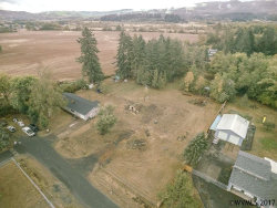 Photo of 795 Holly (Next To) Ln, Lebanon, OR 97355 (MLS # 724185)