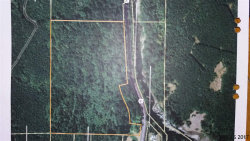Photo of Highway 20 (TL# 600 Acct #0266326), Sweet Home, OR 97345 (MLS # 725418)