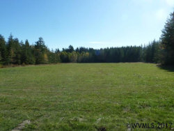 Photo of 21466 Highway 20 (Next To), Philomath, OR 97370 (MLS # 725603)