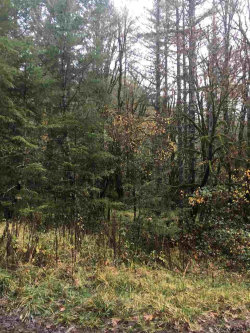 Photo of 34357 Iris (Next To) Cl, Philomath, OR 97370 (MLS # 726765)