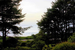 Photo of SW Division St, Waldport, OR 97394 (MLS # 728295)