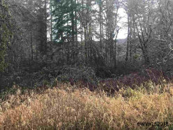 Photo of SW Dupree Valley Rd, McMinnville, OR 97378 (MLS # 728365)