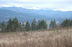 Photo of 40593 McCully Mountain (Next to Parcel #2) Rd N, Lyons, OR 97358 (MLS # 729054)