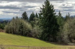 Photo of Fishback Rd, Monmouth, OR 97361 (MLS # 730751)