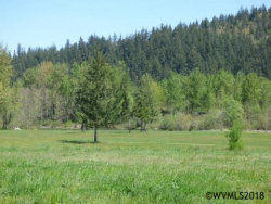 Photo of 2317 Robbins Wy, Lebanon, OR 97355 (MLS # 734405)