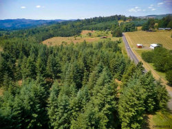 Photo of Richardson (Parcel #1) Rd, Dallas, OR 97338 (MLS # 735149)