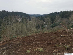 Photo of 551 Anderson Dr, Silverton, OR 97381 (MLS # 737141)