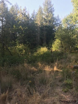 Photo of 20840 Baker Creek Rd, McMinnville, OR 97172 (MLS # 739178)