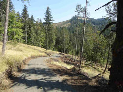 Photo of 24845 Hidden Valley (Next To) Rd, Philomath, OR 97370 (MLS # 740356)