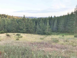 Photo of Goshawk (Lot #24) Ln, Philomath, OR 97370 (MLS # 741351)