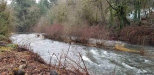 Photo of 1350 S Water (Next To) St, Silverton, OR 97381 (MLS # 742826)