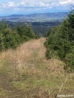 Photo of Robb Mill Rd, Dallas, OR 97338 (MLS # 747148)