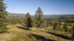 Photo of 40263 Crawfordville (next to) Dr, Sweet Home, OR 97386 (MLS # 750450)