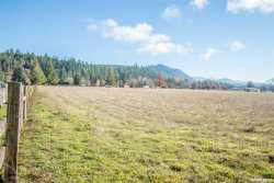 Photo of 35619 Meridian (Next To) Rd, Scio, OR 97374 (MLS # 754580)
