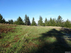 Photo of 3950 Victor Point Rd NE, Silverton, OR 97381 (MLS # 754849)