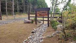 Photo of Robinette (Lot #1) Rd, St Helens, OR 97051 (MLS # 756221)