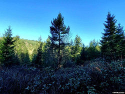 Photo of Treehouse Rd, Monmouth, OR 97361 (MLS # 761113)
