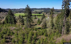 Photo of 5231 Timber Trail Rd NE, Silverton, OR 97381 (MLS # 761966)