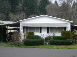 Photo of 1307 S Water (#14) St, Silverton, OR 97381 (MLS # 730061)