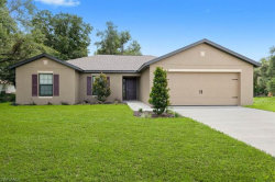 Photo of 814 La Salle AVE, Fort Myers, FL 33913 (MLS # 219038136)