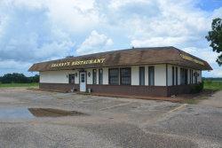 Photo of 4877 Highway 189 ., Kinston, AL 36453 (MLS # 449440)