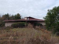 Photo of 1572 Joe Bruer Road, Level Plains, AL 36322 (MLS # 479955)