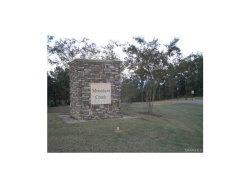 Photo of 109 MERRILL Lane, Deatsville, AL 36022 (MLS # 314045)