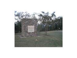 Photo of 285 MERRILL Lane, Deatsville, AL 36022 (MLS # 314047)