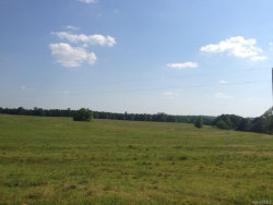 Photo of 0 HOLLEY MILL Road, Eclectic, AL 36024 (MLS # 417706)