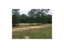 Photo of 12 Molly's Place, Unit 12, Wetumpka, AL 36092 (MLS # 420386)