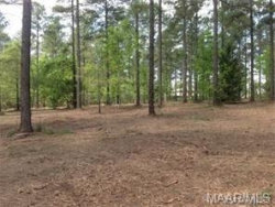 Photo of 1 LITTLE Road, Tallassee, AL 36078 (MLS # 429572)