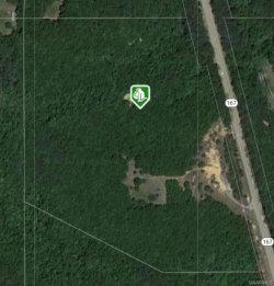 Photo of 16485 Highway 167 ., New Brockton, AL 36351 (MLS # 433676)