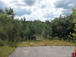 Photo of 0 N Highway 31 ., Deatsville, AL 36022 (MLS # 435483)