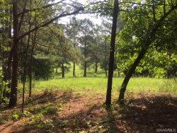 Photo of 0 S Cherokee Trail S Trail, Tallassee, AL 36078 (MLS # 435650)