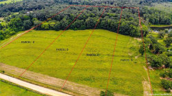 Photo of TBD COUNTY ROAD 668 ., Coffee Springs, AL 36318 (MLS # 438682)
