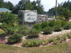 Photo of Lot 22 County Road 166 ., New Brockton, AL 36351 (MLS # 439025)