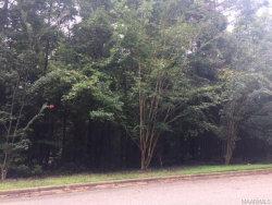 Photo of 78 Little Doe Lane, Wetumpka, AL 36093 (MLS # 439928)