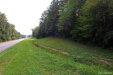 Photo of 0 Hwy 145 ., Clanton, AL 35045 (MLS # 441969)