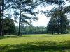 Photo of 2446 County Road 85 ., Deatsville, AL 36022 (MLS # 442012)