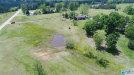 Photo of 2851 County Road 51 ., Clanton, AL 35046 (MLS # 442142)